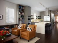 Salon de la cuisine - 150 photos d'intérieurs de cuisine et de salon parfaitement combinés