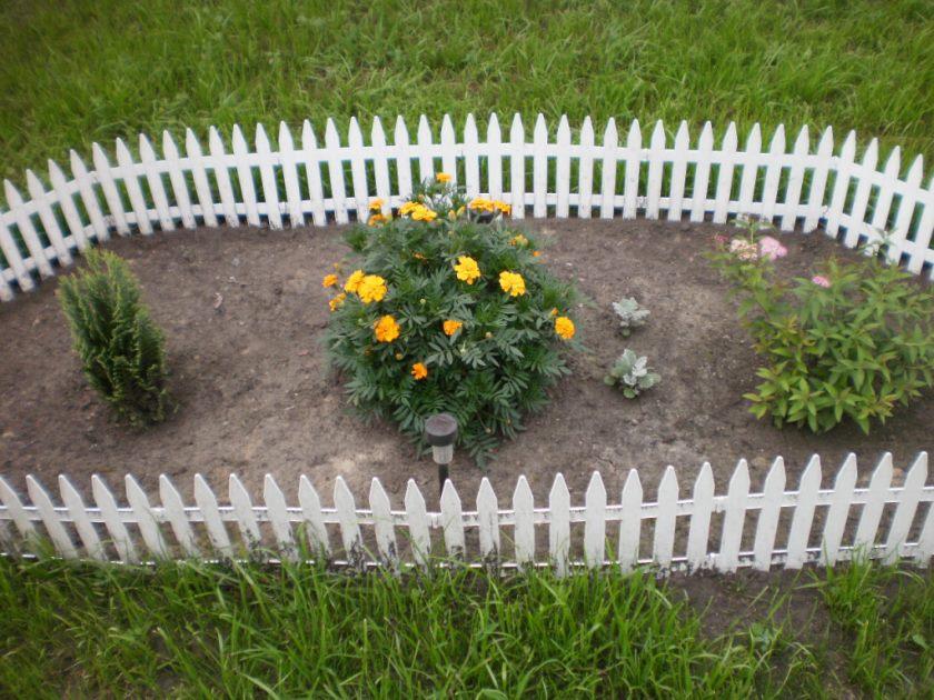 Blomsterbed i hytten