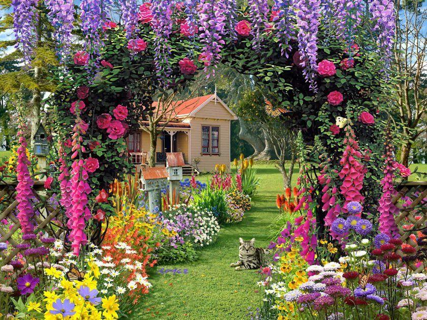 hjem-blomst-haver-tapet-1