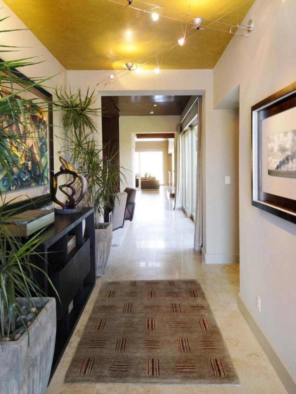 køle-syltet-indendørs-plante-udsmykning-og-moderne-loft-hallway-belysning-ideer-plus-rektangulære-tæppe-eller-sort-skænk