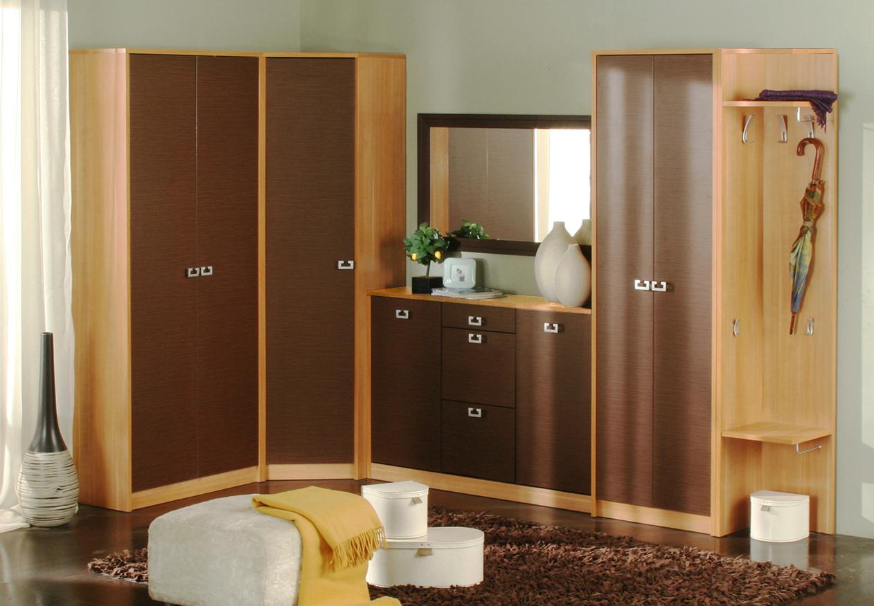 armoires-designs-pour-hall-5