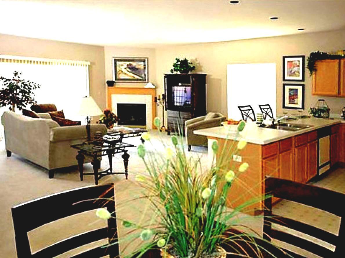 åbent-køkken-stue-lille-og-design-neutral-plan-interiør-ideer-in-top-designs-inden-med