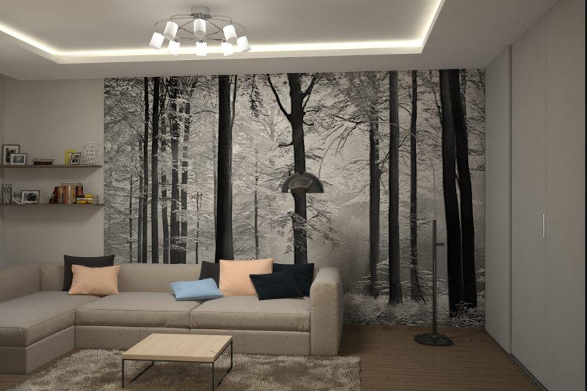 interer-kvartiry-v-stile-minimalizm-1