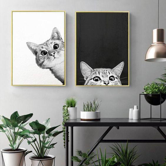 photographies en noir et blanc de chats